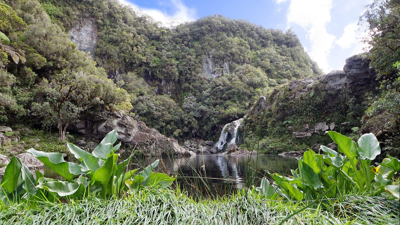 Réunion National Park