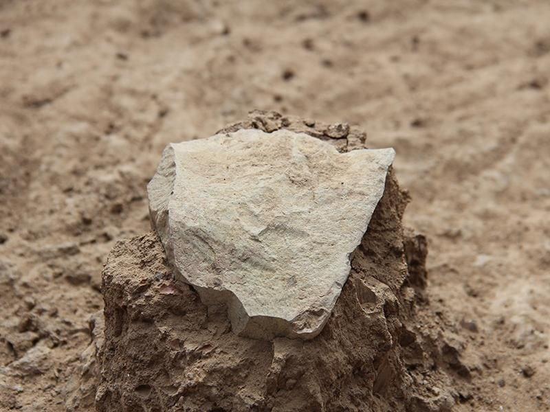 Lomekwi Stone Tools