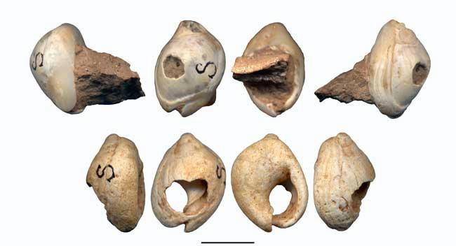 Skhul Cave Beads