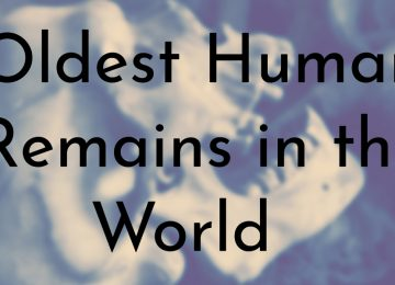 Oldest Human Remains in the World
