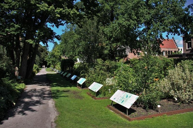 Hortus Botanicus Leiden