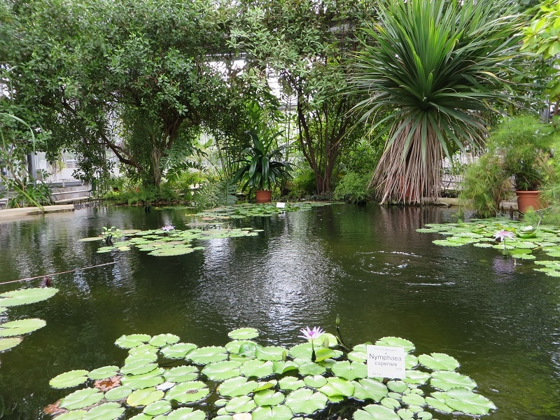Leipzig Botanical Garden