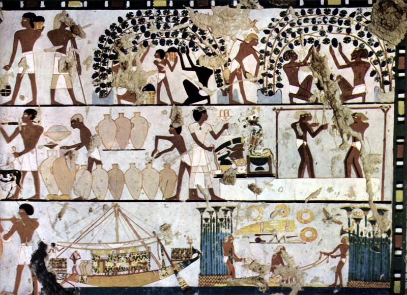 Ancient Egyptian Herbal Wines