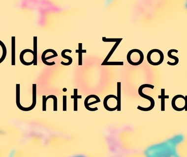 Oldest Zoos in the United States