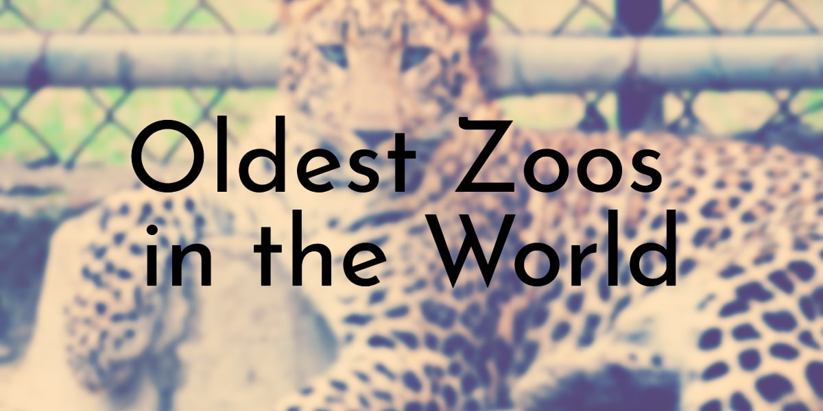 Oldest Zoos in the World