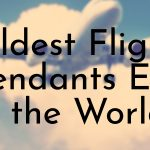 Oldest Flight Attendants Ever in the World