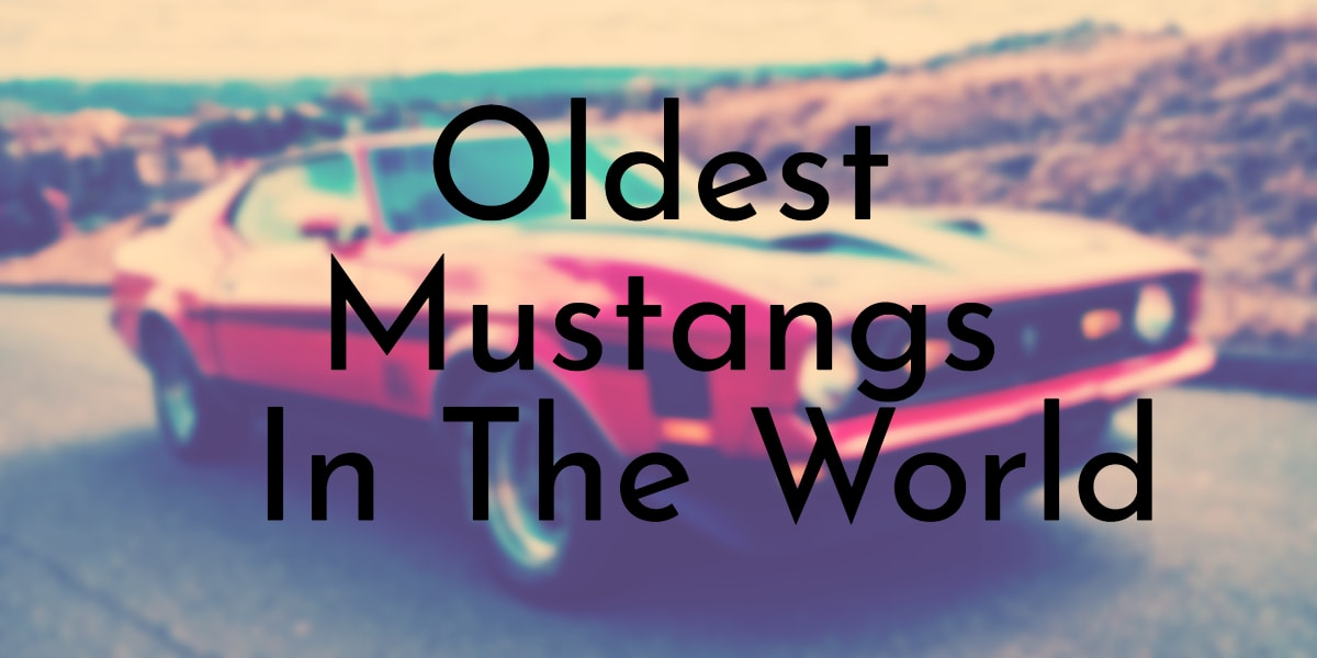 Oldest Mustangs In The World