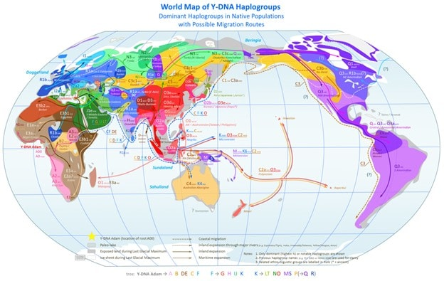 Haplogroup A00
