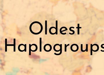 Oldest Haplogroups
